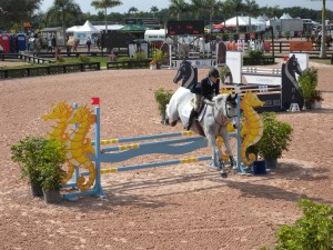 Wellington Equestrian Properties