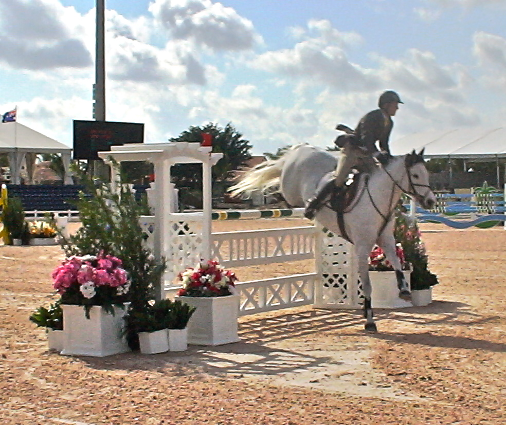 Wellington Equestrian Events