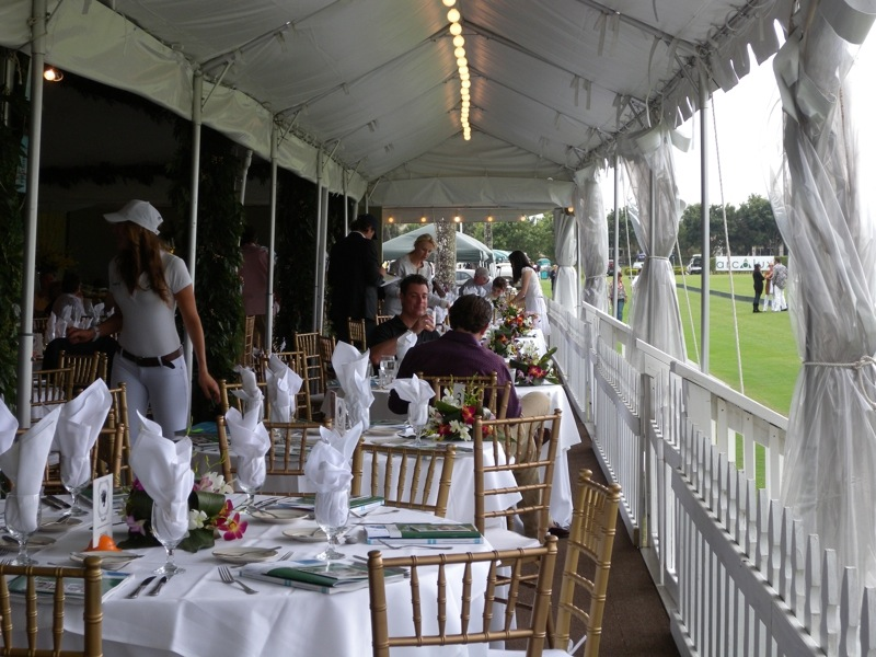 Wellington polo games