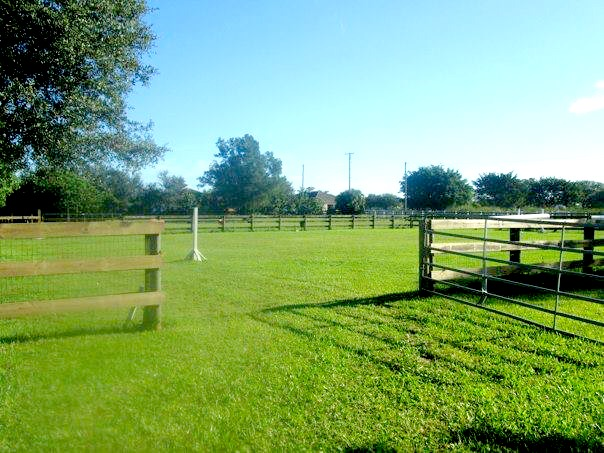 Stalls Barns for rent Wellington WEF