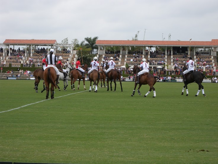 Wellington Equestrian Properties - How Polo Started in Wellington