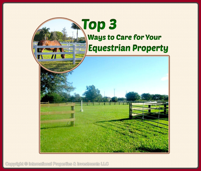 3 Ways to Care for Your Wellington Equestrian Properties