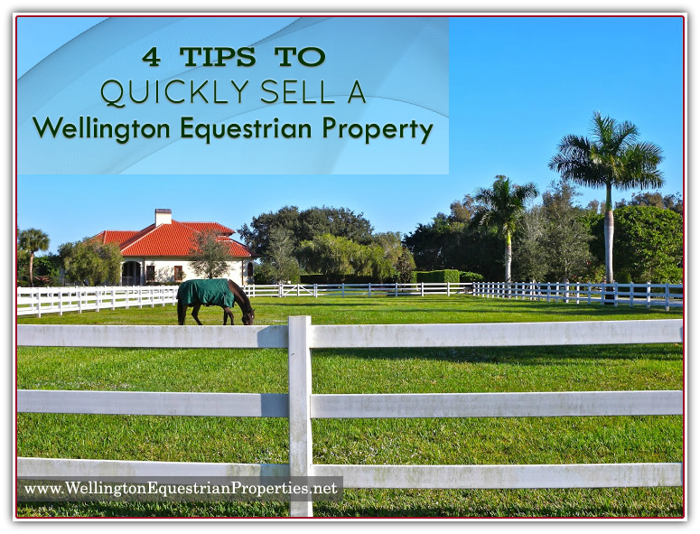 4 Tips on selling your Wellington equestrian property fast | Katerina Gasset | Nestor Gasset