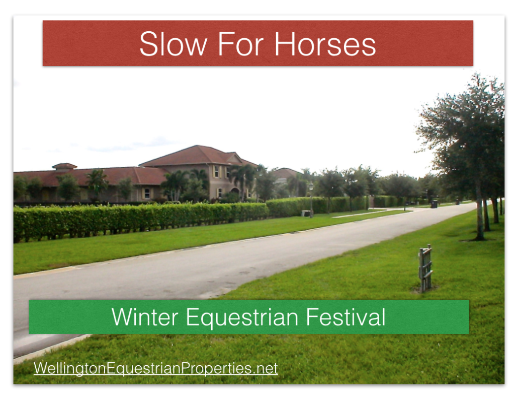 Winter Wellington Florida Safety Issues Slow for Horses Wellington Equestrian Properties