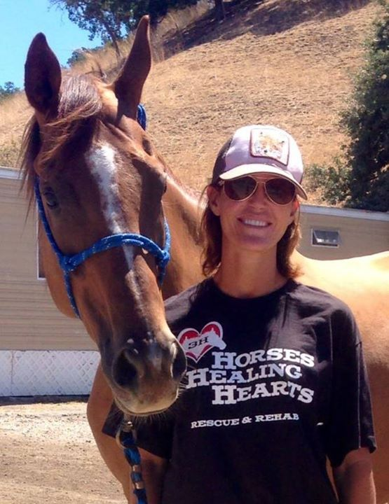 Horses Healing Hearts- Therapy that Works | FloridaIPI