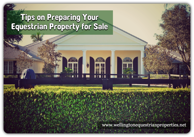 Top Tips To Get Your Wellington Equestrian Property Sold