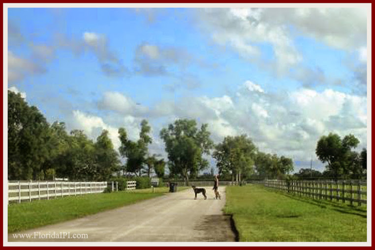Wellington Fl Southfields equestrian homes for sale Florida IPI International Properties and Investments (7)07