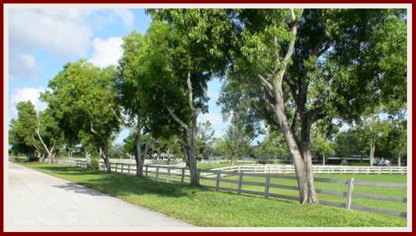 Wellington Fl Southfields equestrian homes for sale Florida IPI International Properties and Investments (8)08