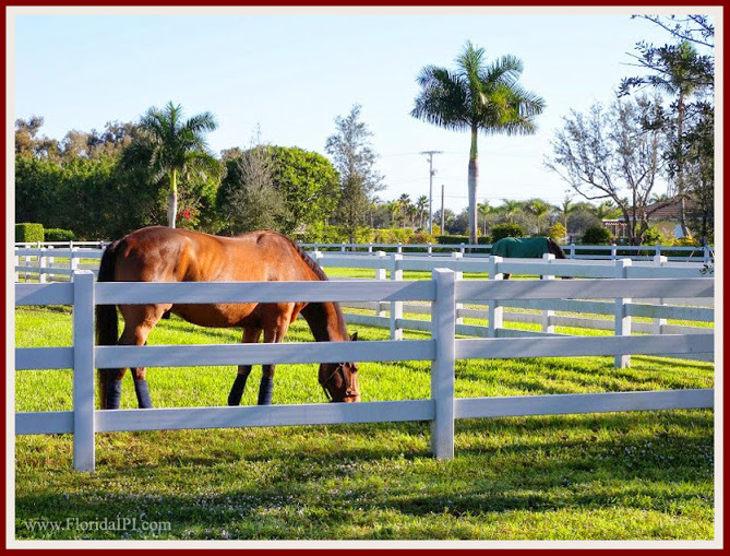 Wellington Fl Saddle Trail Park equestrian homes for sale Florida IPI International Properties and Investments (6)