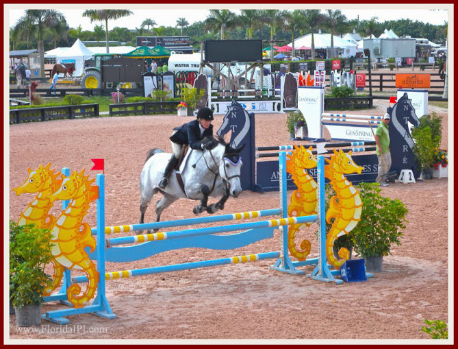 Wellington Fl Saddle Trail Park equestrian homes for sale Florida IPI International Properties and Investments (7)